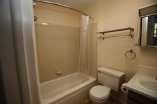 526-s-division-apt-9-bathroom-01
