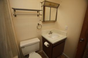 526-s-division-apt-9-bathroom-04