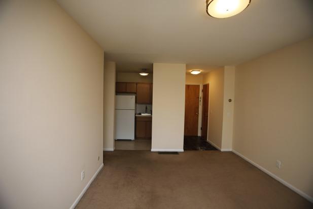 526-s-division-apt-9-living-room-03